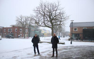 Gemeentebelangen probeert kastanje voor Rodense centrum te behouden
